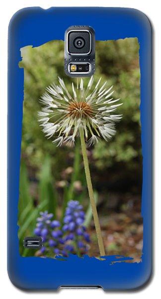 Starry Dandelion Galaxy S5 Case by Margie Avellino