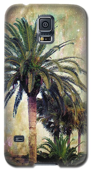 Starry Evening In St. Augustine Galaxy S5 Case by Jan Amiss Photography