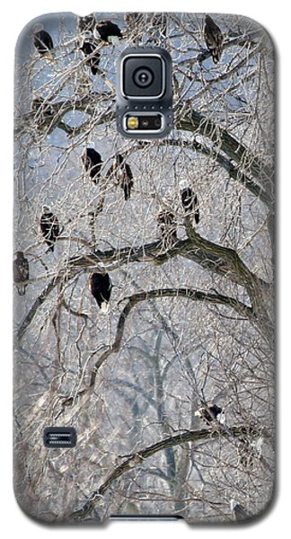 Galaxy S5 Case featuring the photograph Starved Rock Eagles by Paula Guttilla