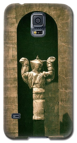 Statues Individual #1 Galaxy S5 Case
