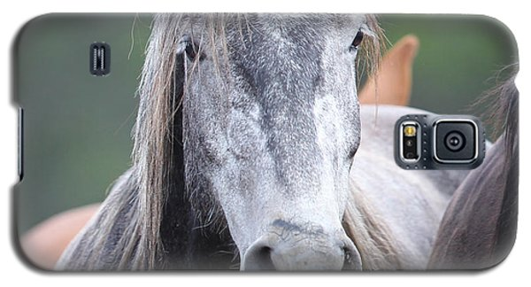 Steel Grey Galaxy S5 Case