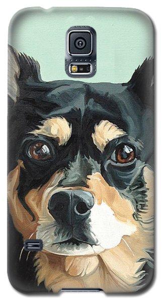 Stella Galaxy S5 Case