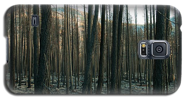 Stickpin Galaxy S5 Case