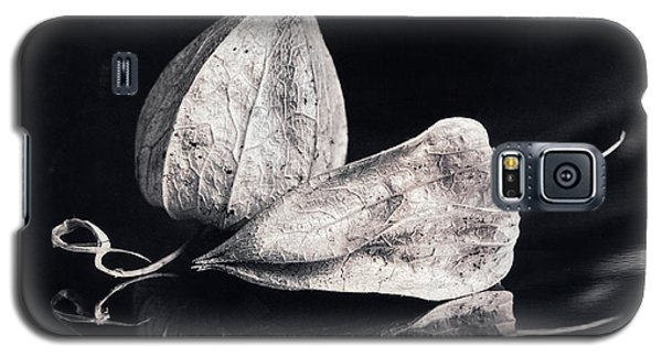 Still Life #14167 Galaxy S5 Case