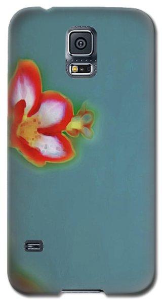 Still Life Art 15 Galaxy S5 Case