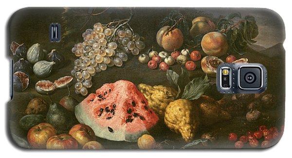 Still Life Galaxy S5 Case by Bartolomeo Bimbi