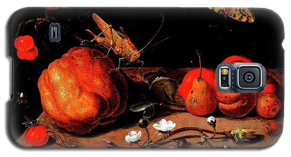 Still Life Fruit Grasshopper Butterfly Galaxy S5 Case