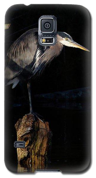 Stillness On The Hunt Galaxy S5 Case