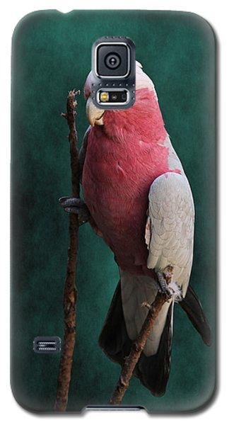 Stiltwalker - Roseate Cockatoo Galaxy S5 Case