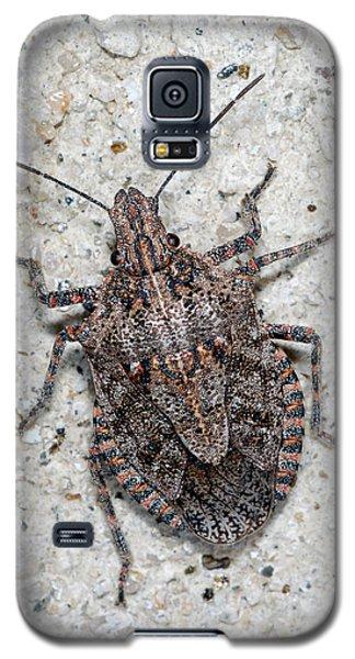 Stink Bug Galaxy S5 Case