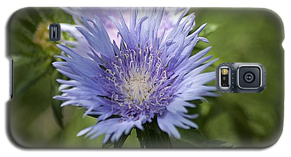 Galaxy S5 Case featuring the photograph Stokes Aster 20120703_125a by Tina Hopkins