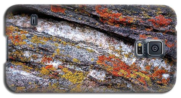 Stone And Lichen Galaxy S5 Case