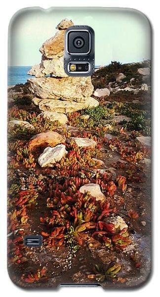 Stone Balance Galaxy S5 Case