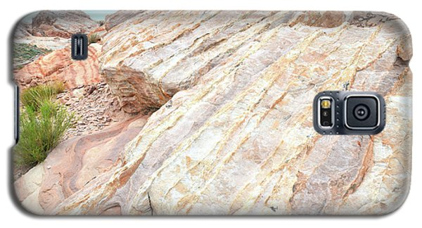 Galaxy S5 Case featuring the photograph Stone Feet In Valley Of Fire by Ray Mathis