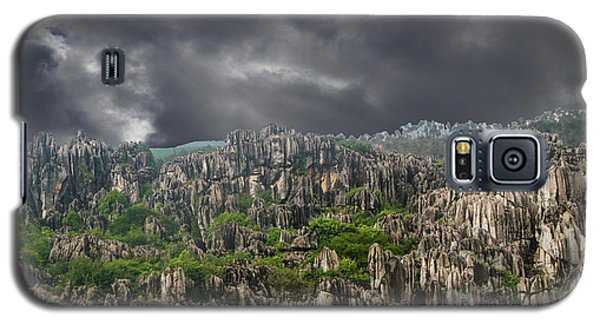 Stone Forest 3 Galaxy S5 Case