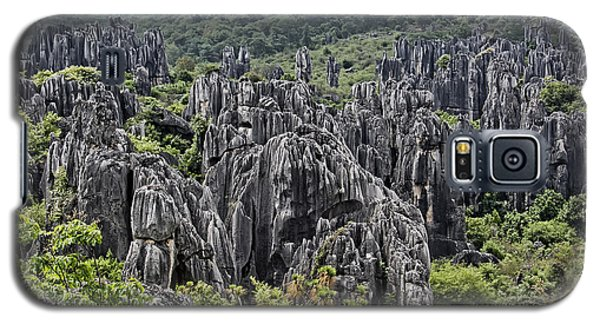 Stone Forest Galaxy S5 Case by Wade Aiken