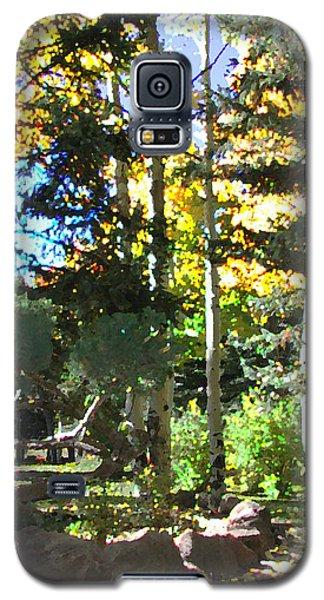 Stone Park Trails Galaxy S5 Case