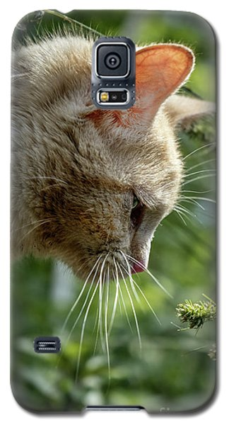 Stop And Smell The Flowers 9433a Galaxy S5 Case