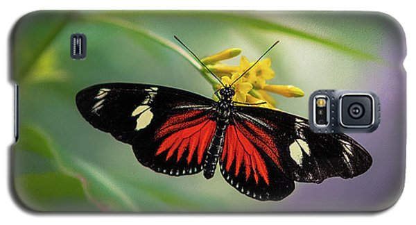 Butterfly, Stop And Smell The Flowers Galaxy S5 Case