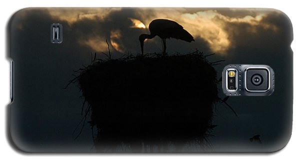 Stork With Evening Sun Light  Galaxy S5 Case