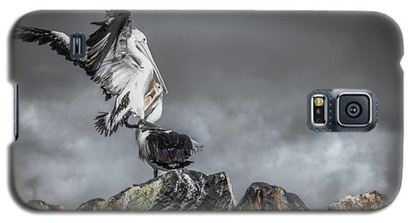 Storm Birds Galaxy S5 Case