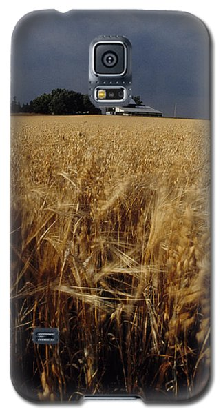 Storm Over Wheat Field  Galaxy S5 Case