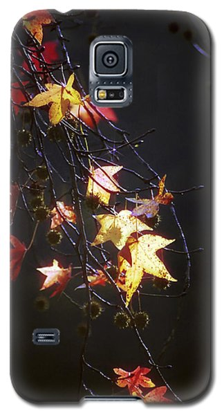 Storm's Bliss Galaxy S5 Case