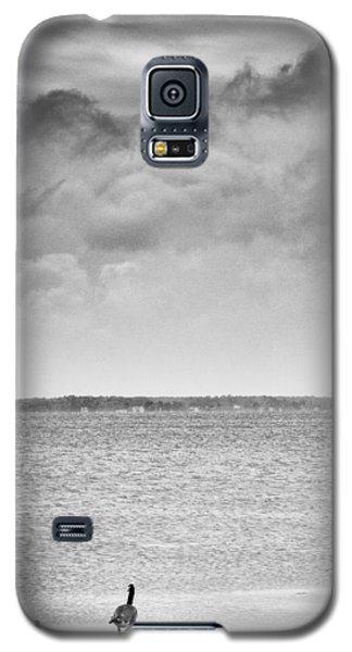 Canada Geese - Currituck Sound Galaxy S5 Case