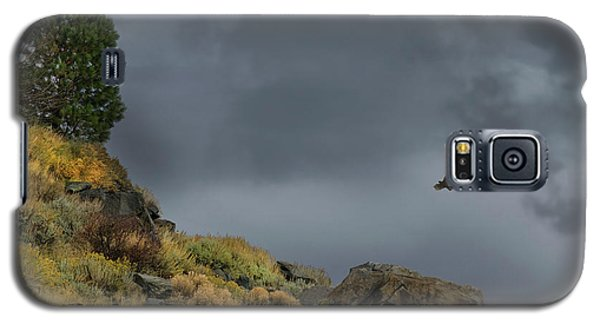 Galaxy S5 Case featuring the photograph Stormy Flight by Frank Wilson