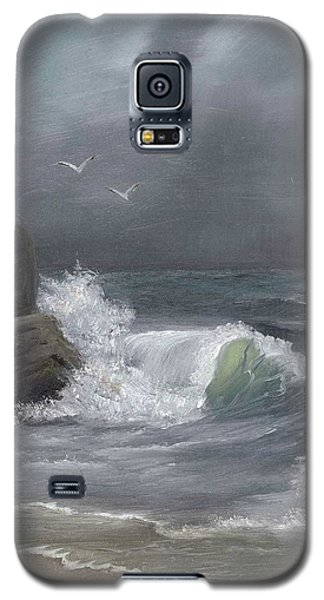 Stormy Waters Galaxy S5 Case by Sheri Keith