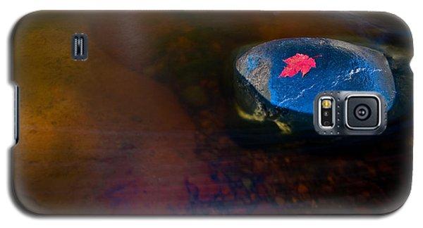 Stranded Leaf Galaxy S5 Case