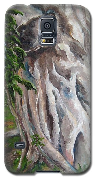 Strangler Fig Galaxy S5 Case by Lisa Boyd