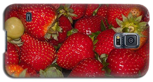 Strawberries 731 Galaxy S5 Case