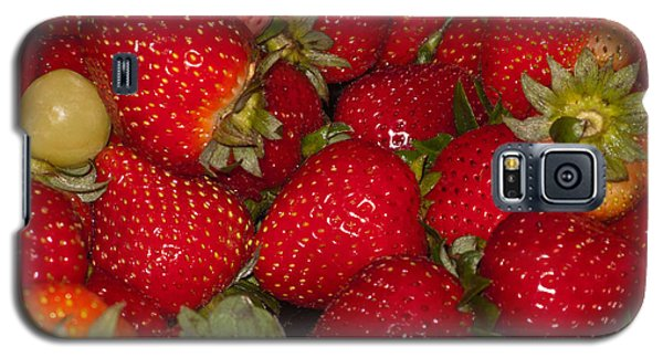 Strawberries 731 Galaxy S5 Case