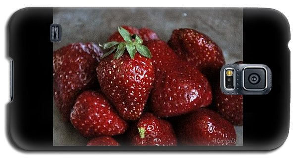 Strawberries Galaxy S5 Case