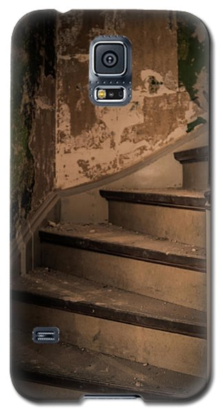 Galaxy S5 Case featuring the photograph Stray Cat by Odd Jeppesen