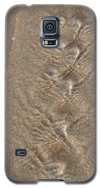 Stream Galaxy S5 Case