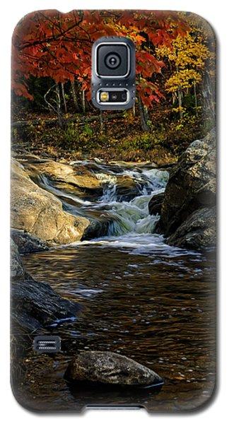 Stream In Autumn No.17 Galaxy S5 Case