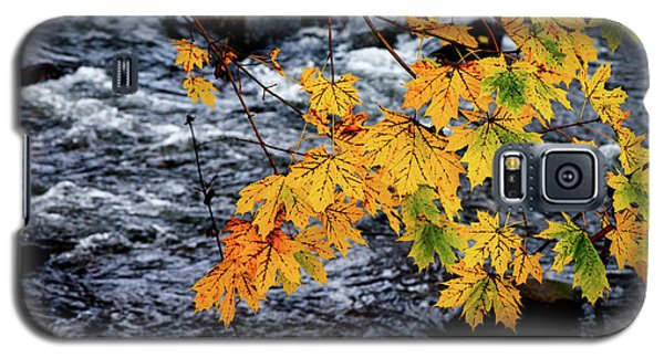 Stream In Fall Galaxy S5 Case