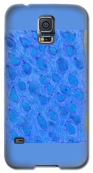 Stream Of Blessings Galaxy S5 Case