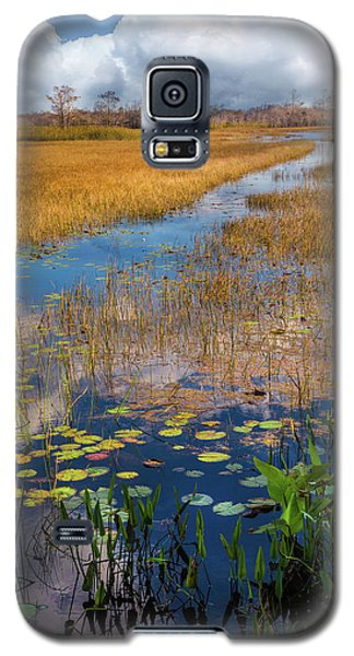 Galaxy S5 Case featuring the photograph Stream Through The Everglades by Debra and Dave Vanderlaan