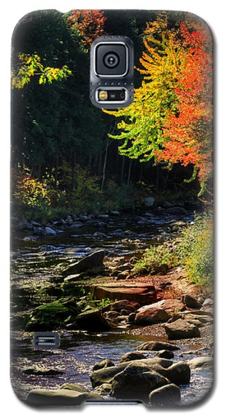 Galaxy S5 Case featuring the photograph Stream by Tom Prendergast