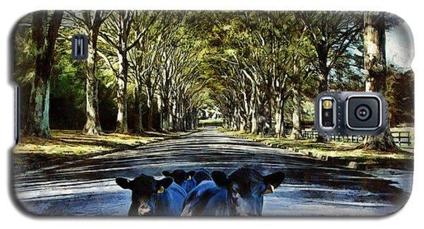 Street Cows Galaxy S5 Case