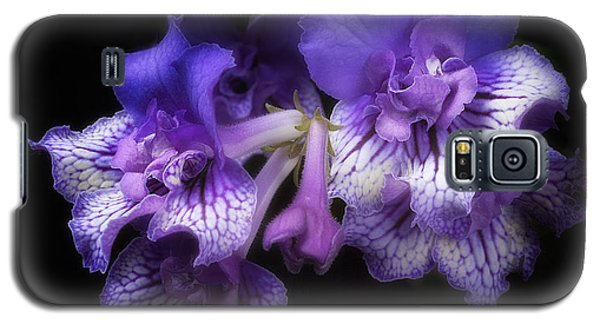 Streptocarpus 'blue Frills' Galaxy S5 Case