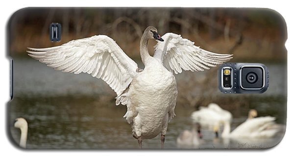 Stretch Your Wings Galaxy S5 Case