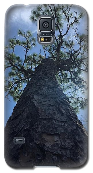Stretching At Eagle Lake Park Galaxy S5 Case