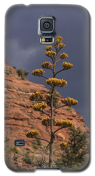 Galaxy S5 Case featuring the photograph Stretching Into A Threatening Sky by Laura Pratt
