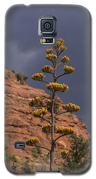 Stretching Into A Threatening Sky Galaxy S5 Case