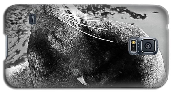 Stretch, Black And White Galaxy S5 Case