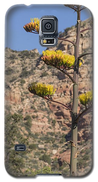 Galaxy S5 Case featuring the photograph Stretching Tall by Laura Pratt